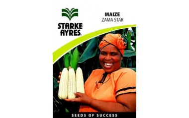 Maize - Zama Star