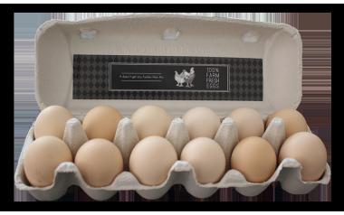 Free Range Eggs 12's
