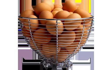 Eggs 24's