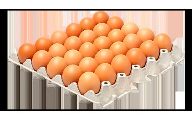 Free range eggs 30's